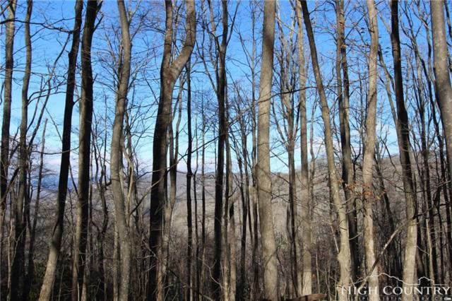 Lot 226 Ontario Ridge, Boone, NC 28607 (MLS #205011) :: Keller Williams Realty - Exurbia Real Estate Group
