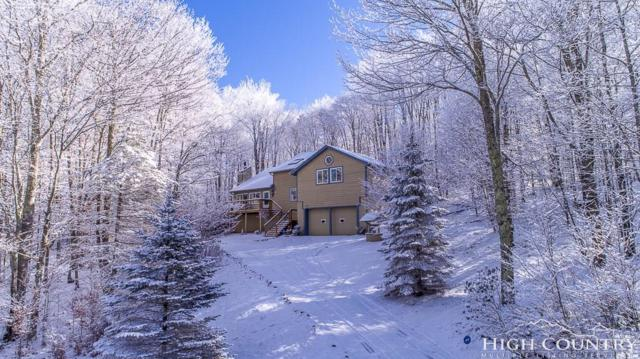 112 Wild Daisy Lane, Beech Mountain, NC 28604 (MLS #205020) :: Keller Williams Realty - Exurbia Real Estate Group