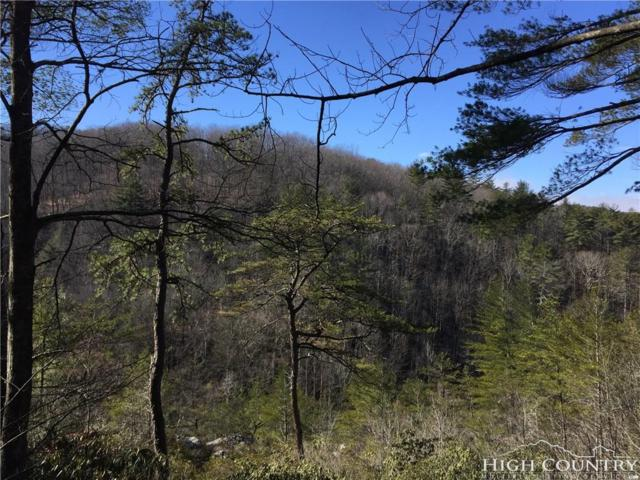 Tbd Roaring Ridge Road, Deep Gap, NC 28618 (MLS #205039) :: Keller Williams Realty - Exurbia Real Estate Group