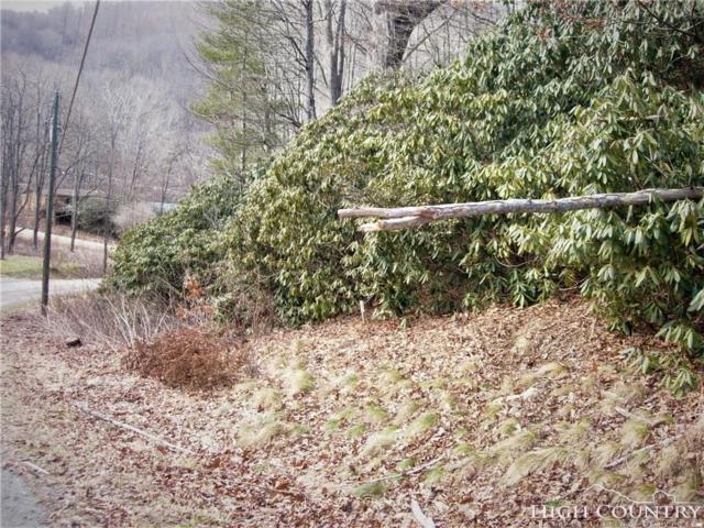 Lot 6 Betsy Circle, Todd, NC 28684 (MLS #205052) :: Keller Williams Realty - Exurbia Real Estate Group