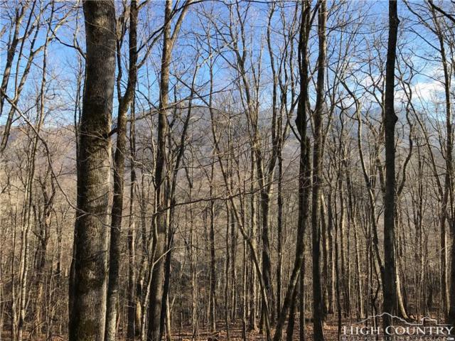 Lot 15A Letterfern Drive, Banner Elk, NC 28604 (MLS #205141) :: Keller Williams Realty - Exurbia Real Estate Group