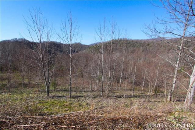 Lot 11/12 Pleasant View Drive, Vilas, NC 28696 (MLS #205164) :: Keller Williams Realty - Exurbia Real Estate Group