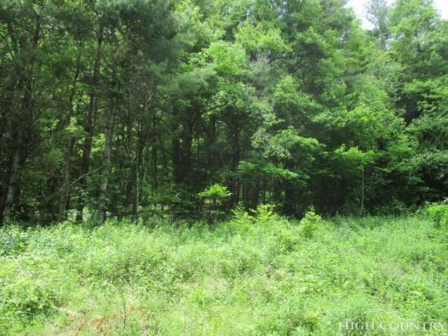 TBD Rhododendron Run, Fleetwood, NC 28626 (MLS #205216) :: Keller Williams Realty - Exurbia Real Estate Group