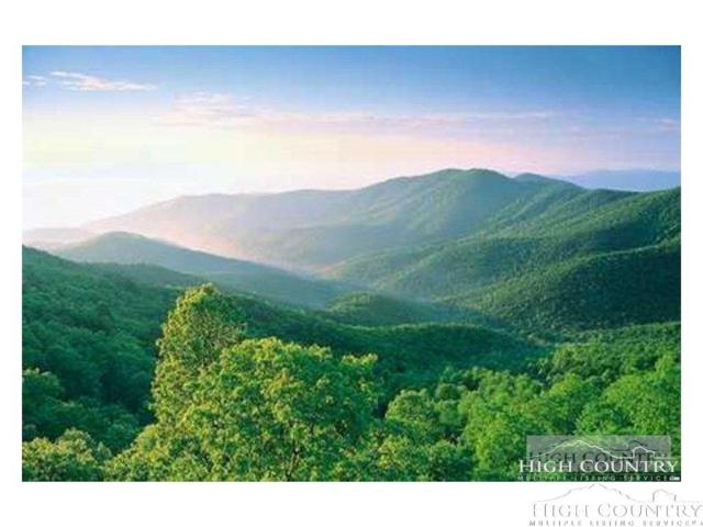 Lots 42 Heavenly Mountain Drive, Boone, NC 28607 (MLS #205272) :: Keller Williams Realty - Exurbia Real Estate Group