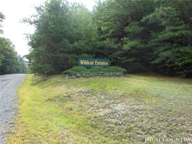 Lot 40 Wildcat Estates Drive, Deep Gap, NC 28618 (MLS #205294) :: Keller Williams Realty - Exurbia Real Estate Group