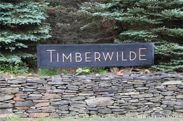 Lot 10 & 11 Timberwilde Road, Laurel Springs, NC 28644 (MLS #205430) :: RE/MAX Impact Realty