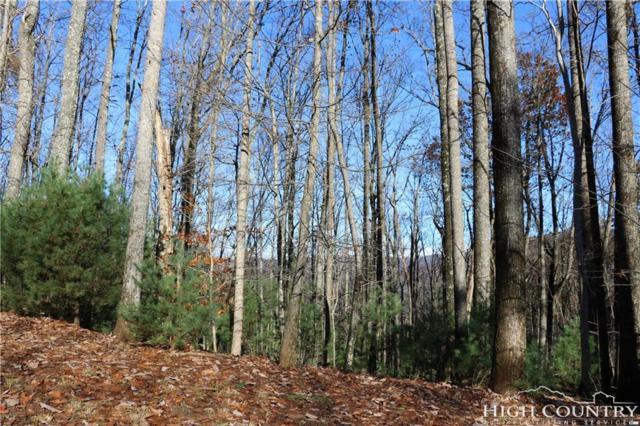 103R Powder Horn Mountain Estates Road, Deep Gap, NC 28618 (MLS #205494) :: Keller Williams Realty - Exurbia Real Estate Group