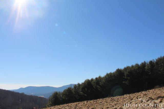 Lot 71 Denise Drive, West Jefferson, NC 28694 (MLS #205526) :: Keller Williams Realty - Exurbia Real Estate Group
