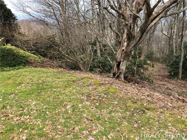 TBD High Peak, Boone, NC 28607 (MLS #205529) :: Keller Williams Realty - Exurbia Real Estate Group