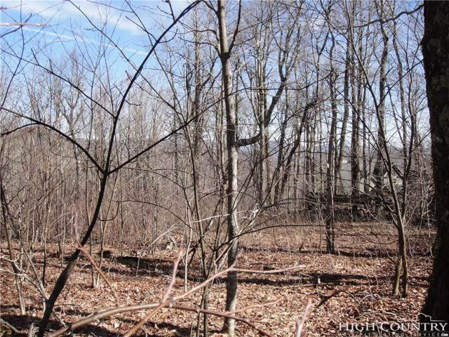 Lot 2A Sunny Chestnut Forest Road, Boone, NC 28607 (MLS #205557) :: Keller Williams Realty - Exurbia Real Estate Group