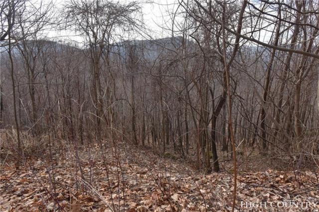 Lot 238 Abbie Trail, West Jefferson, NC 28694 (MLS #205575) :: Keller Williams Realty - Exurbia Real Estate Group