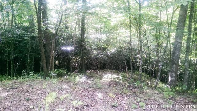 TBD River Park Drive, Piney Creek, NC 28663 (MLS #205587) :: Keller Williams Realty - Exurbia Real Estate Group
