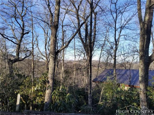 180 Galax Loop, Newland, NC 28657 (MLS #205613) :: Keller Williams Realty - Exurbia Real Estate Group