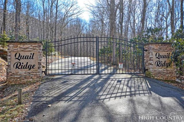 Lot 24 Quail Ridge Court, West Jefferson, NC 28694 (MLS #205640) :: Keller Williams Realty - Exurbia Real Estate Group