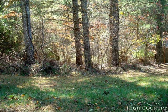Lot 51 Turkey Ridge, Lansing, NC 28643 (MLS #205658) :: Keller Williams Realty - Exurbia Real Estate Group