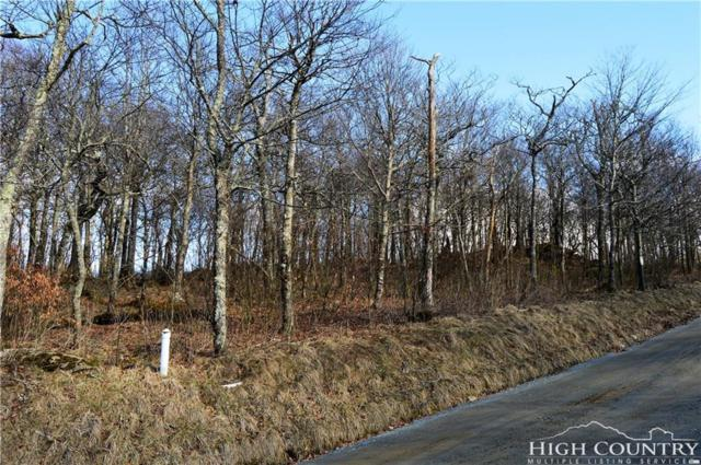 Lot 2 N Pinnacle Ridge Road, Beech Mountain, NC 28604 (MLS #205667) :: RE/MAX Impact Realty