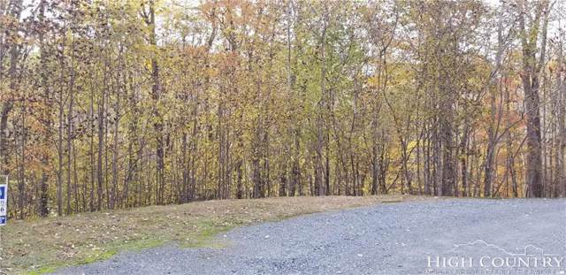 Lot 44 & 45 Green Berry Lane, Vilas, NC 28692 (MLS #205722) :: Keller Williams Realty - Exurbia Real Estate Group