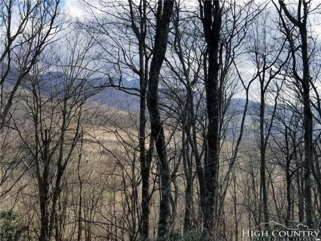 TBD Horse Bottom Road, Banner Elk, NC 28604 (MLS #205768) :: Keller Williams Realty - Exurbia Real Estate Group