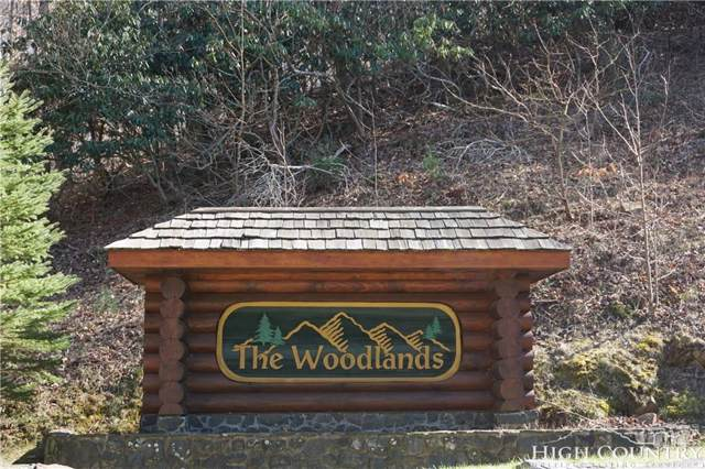 TBD Raccoon Ridge, Lansing, NC 28643 (MLS #205783) :: RE/MAX Impact Realty
