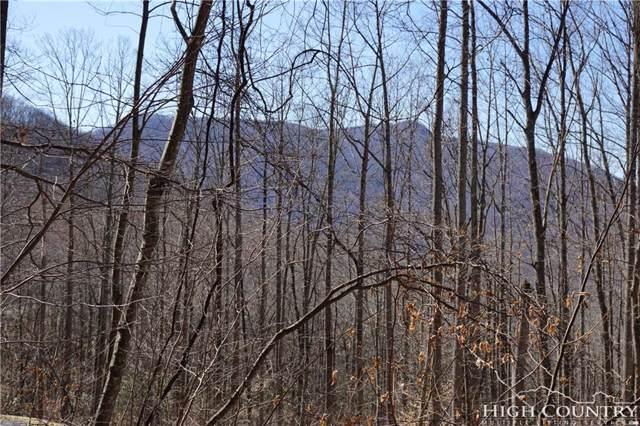 TBD Raccoon Ridge, Lansing, NC 28643 (MLS #205821) :: RE/MAX Impact Realty