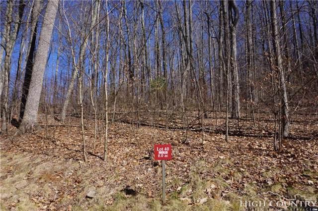 TBD Raccoon Ridge, Lansing, NC 28643 (MLS #205822) :: RE/MAX Impact Realty