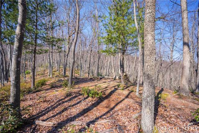 Lot 5 Twain Place, Boone, NC 28607 (MLS #205860) :: RE/MAX Impact Realty
