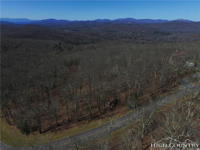 Lot 8 Grandmother Mountain, Linville, NC 28646 (MLS #205942) :: Keller Williams Realty - Exurbia Real Estate Group
