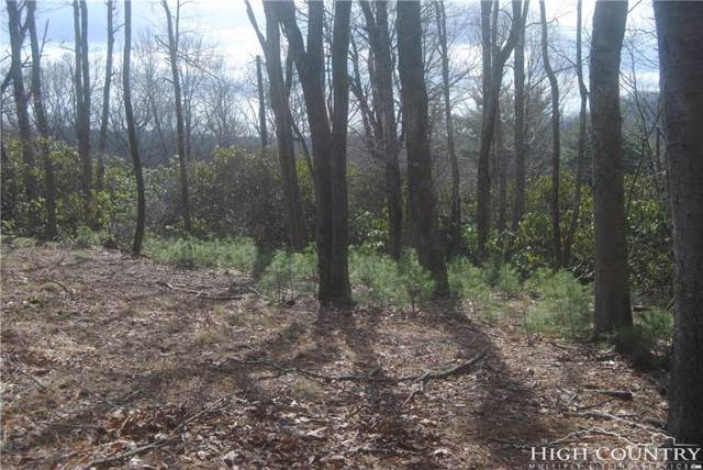 Tract 6 Hiview Drive, Blowing Rock, NC 28605 (MLS #205966) :: RE/MAX Impact Realty
