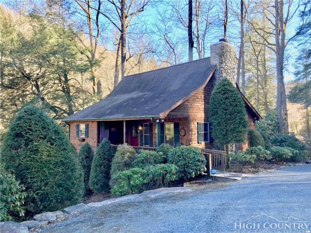 165 Acadiana Lane, Vilas, NC 28692 (MLS #206082) :: Keller Williams Realty - Exurbia Real Estate Group
