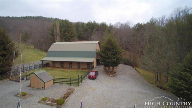 420 Virginia Lane, Mouth of Wilson, VA 24363 (MLS #206222) :: Keller Williams Realty - Exurbia Real Estate Group