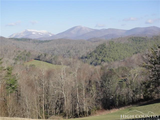 Lot 13 Chestnut Knob Road, Boone, NC 28607 (MLS #206281) :: Keller Williams Realty - Exurbia Real Estate Group