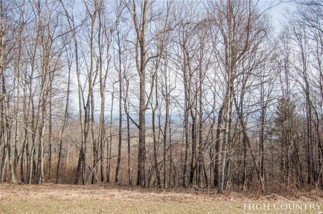 #8-9 Olde Stone Ridge, Crumpler, NC 28617 (MLS #206336) :: Keller Williams Realty - Exurbia Real Estate Group