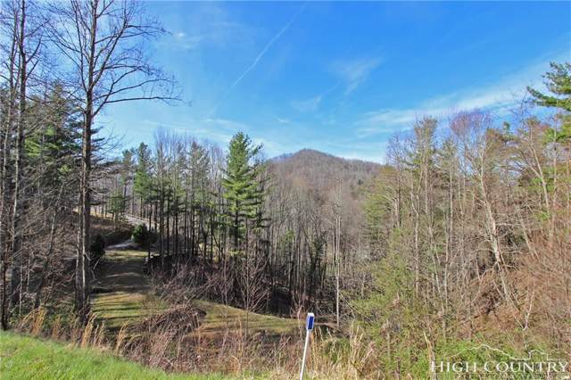 Lot 10 Limber Twig Lane, Vilas, NC 28692 (MLS #206429) :: Keller Williams Realty - Exurbia Real Estate Group