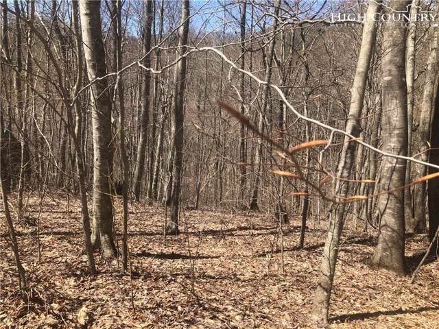 lot 22 Carefree Cove Road, Zionville, NC 28698 (MLS #206496) :: RE/MAX Impact Realty