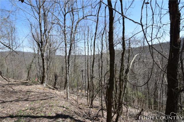 TBD Pine Swamp Road, Fleetwood, NC 28626 (MLS #206509) :: Keller Williams Realty - Exurbia Real Estate Group