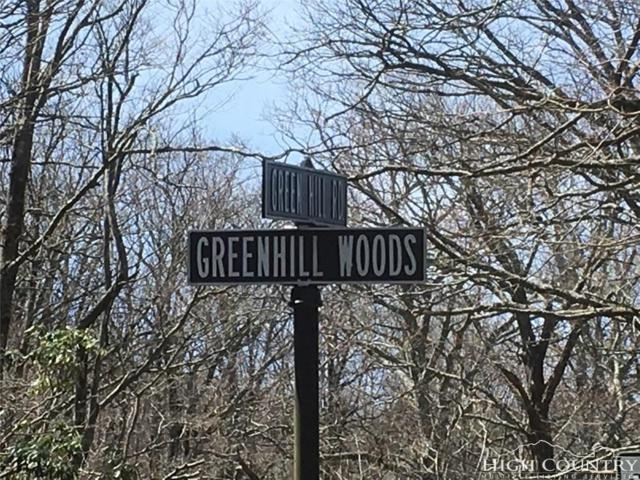 Lot 21 Green Hill Woods, Blowing Rock, NC 28605 (MLS #206532) :: Keller Williams Realty - Exurbia Real Estate Group