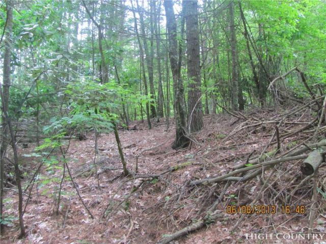 Lot #48 Wyldwood Place, West Jefferson, NC 28694 (MLS #206538) :: RE/MAX Impact Realty