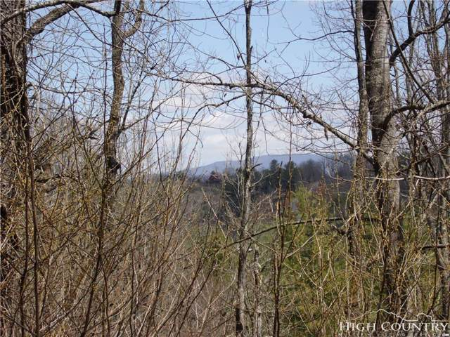 Lot #13A River Forest Road, Piney Creek, NC 28663 (#206548) :: Mossy Oak Properties Land and Luxury