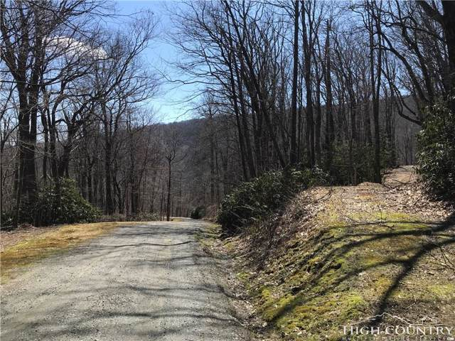 30,31,32,50,51 C/W Snowy Ridge Way, Blowing Rock, NC 28605 (MLS #206566) :: Keller Williams Realty - Exurbia Real Estate Group