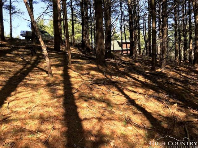 TBD Davis Acres Drive, West Jefferson, NC 28694 (MLS #206584) :: Keller Williams Realty - Exurbia Real Estate Group