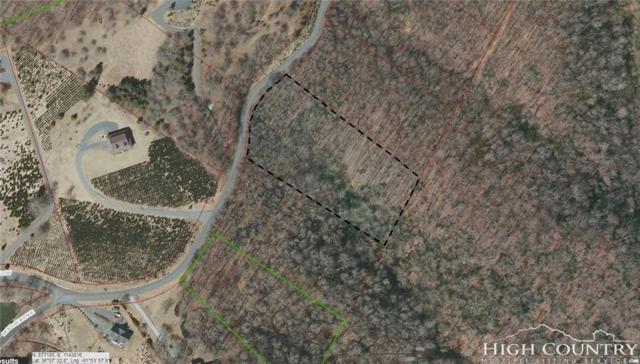 Lot A5 Meadow Avenue, Banner Elk, NC 28604 (MLS #206622) :: Keller Williams Realty - Exurbia Real Estate Group