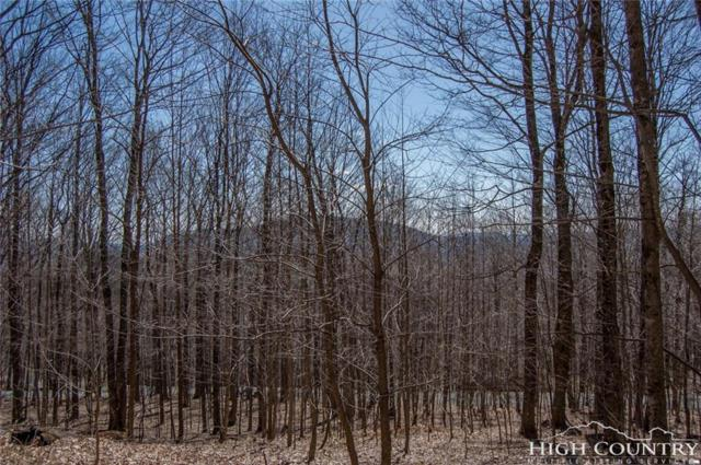TBD Big Tree Road, West Jefferson, NC 28694 (MLS #206743) :: RE/MAX Impact Realty