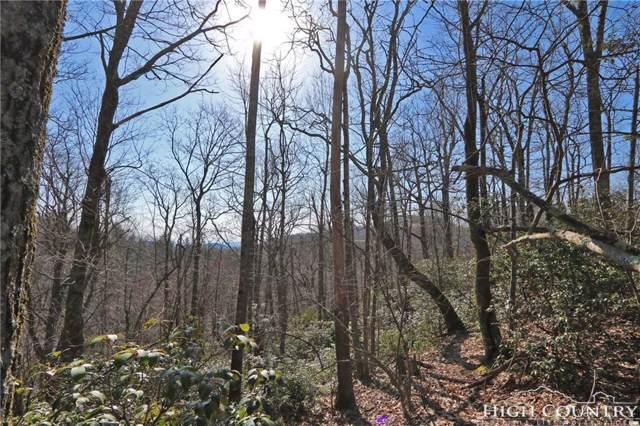 Lot 53 Boone Coffey Trail, Boone, NC 28607 (MLS #206773) :: Keller Williams Realty - Exurbia Real Estate Group