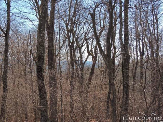 Lot #13 Spice Bottom Trail, Banner Elk, NC 28604 (MLS #206821) :: Keller Williams Realty - Exurbia Real Estate Group