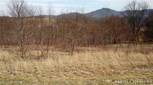 Lot 7 Banner Grande Lane, Banner Elk, NC 28604 (MLS #206858) :: Keller Williams Realty - Exurbia Real Estate Group