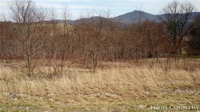 Lot 7 Banner Grande Lane, Banner Elk, NC 28604 (MLS #206858) :: RE/MAX Impact Realty
