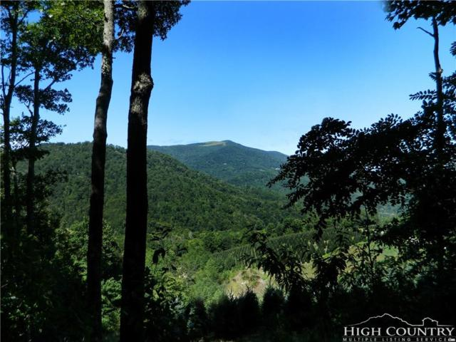 TBD Mountain Glen Drive, Newland, NC 28657 (MLS #206897) :: RE/MAX Impact Realty