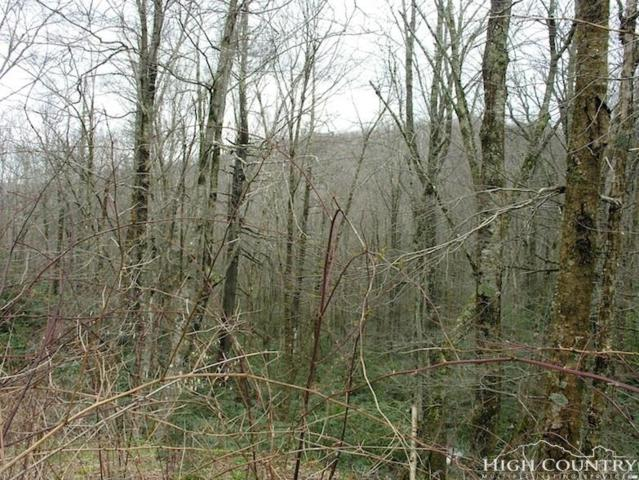 142 Wild Daisy Lane, Beech Mountain, NC 28604 (MLS #206953) :: Keller Williams Realty - Exurbia Real Estate Group