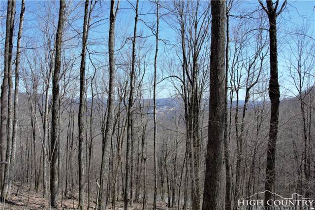 TBD Little Tree Road, West Jefferson, NC 28694 (MLS #206966) :: RE/MAX Impact Realty