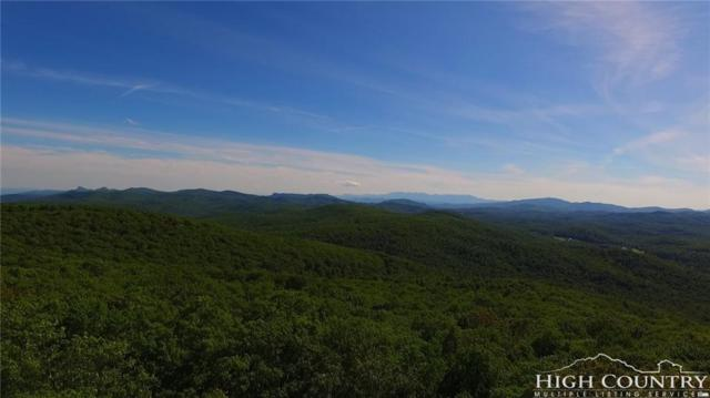 203 Grandmother Mountain Road, Linville, NC 28646 (MLS #207040) :: Keller Williams Realty - Exurbia Real Estate Group